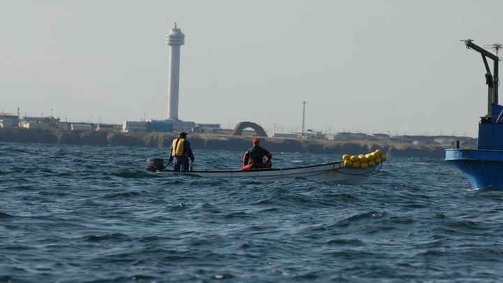 Трагедию используют: Японцы сделали русских крайними в столкновении в Охотском море
