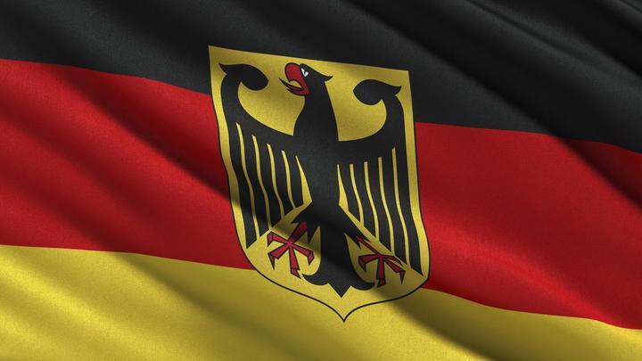 Пострадавшие от властей Германии просят защиты и политического убежища у России