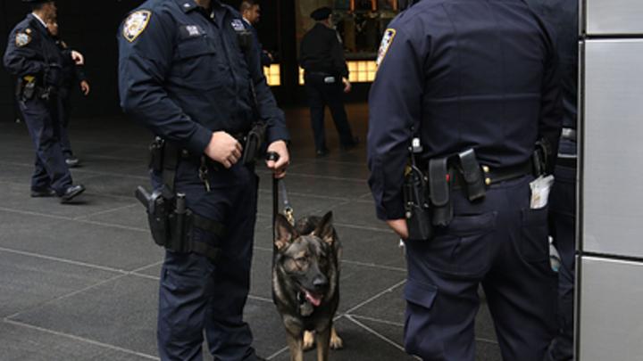 В США обнаружили место отправки посылок с бомбами - СМИ