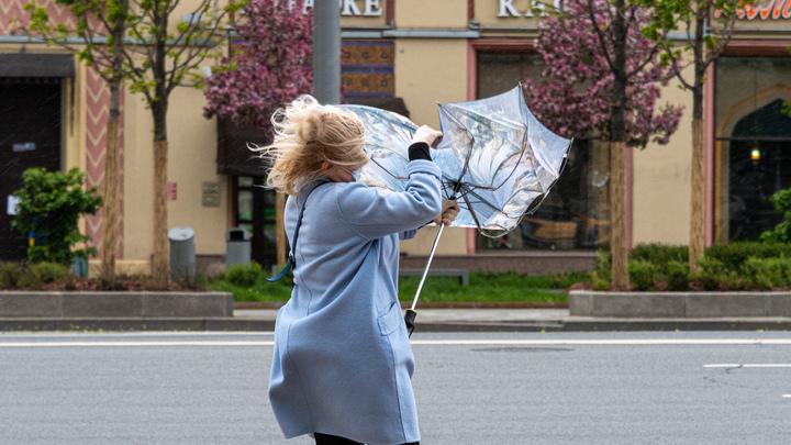 МЧС предупредило об усилении ветра в Санкт-Петербурге