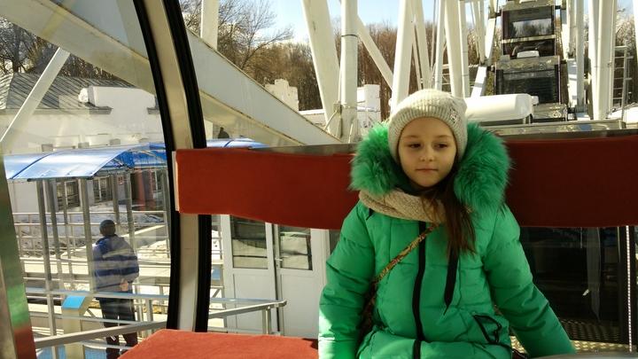 Владимирское колесо обозрение получило документ о допуске к работе
