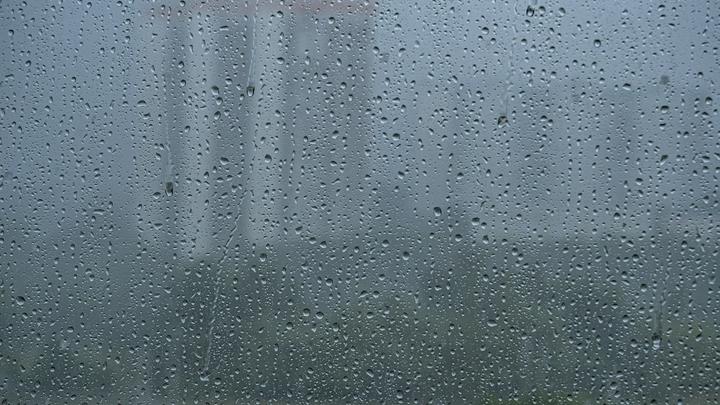 Сочинский нацпарк закрыт из-за непогоды