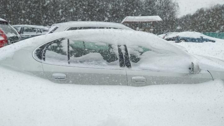 В Нижнем Новгороде этой ночью пошёл первый снег