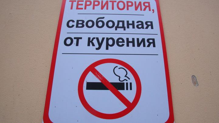 А курящих губернаторов сразу снимать: Минздраву подсказали ещё способы борьбы с курением