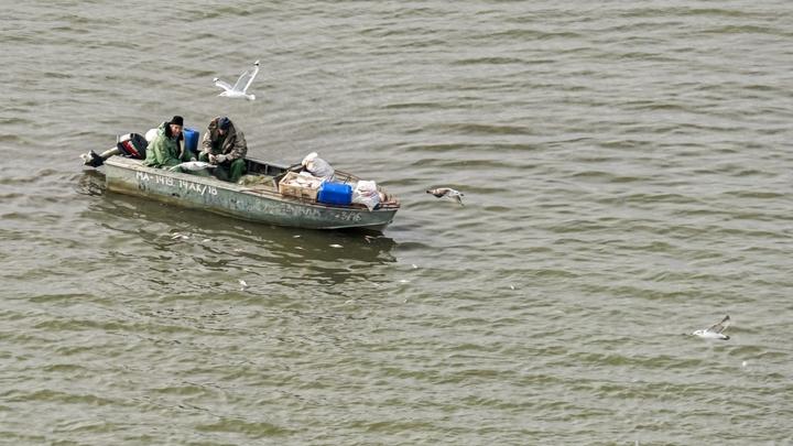 «Хотели обменяться опытом»: Пьяные украинские рыбаки с уловом доплыли до Крыма