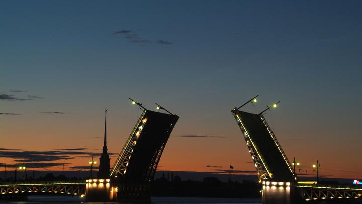 Длиннее Александра Невского на 600 метров: В Петербурге проектируют гигантский разводной мост