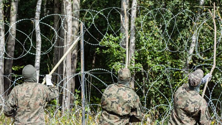 Гибридная война и мигранты. Белорусский министр отмахнулся: Смешно слушать
