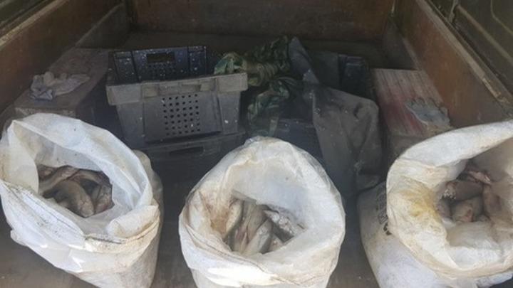 В Таганрогском заливе силовики задержали двух браконьеров с мешками рыбы