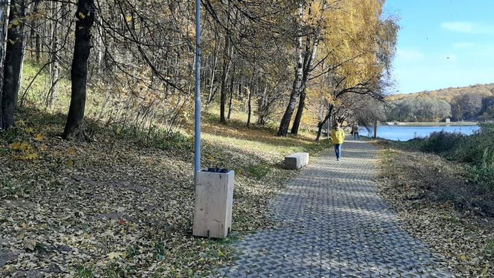 Прокуратура проверит законность вырубки деревьев на Щёлоковском хуторе