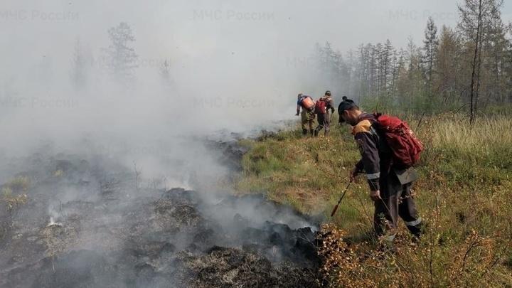МЧС направило подкрепление на борьбу с торфяными пожарами на окраине Екатеринбурга