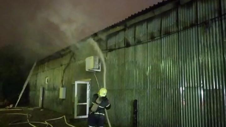 Живой товар спасен: В Краснодаре сгорел зоомагазин