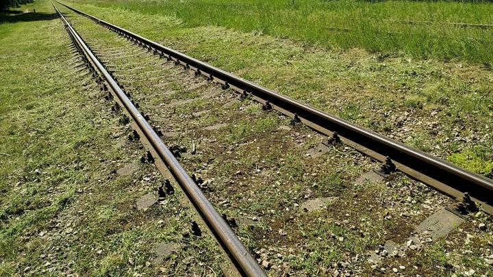 Под Новосибирском поезд насмерть сбил пенсионерку из-за застрявшей тележки