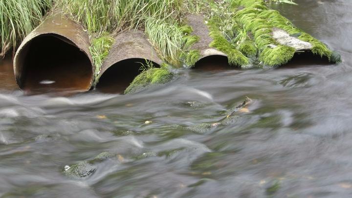 Минэкологии спасло от незаконных стоков подмосковную реку Горетовку