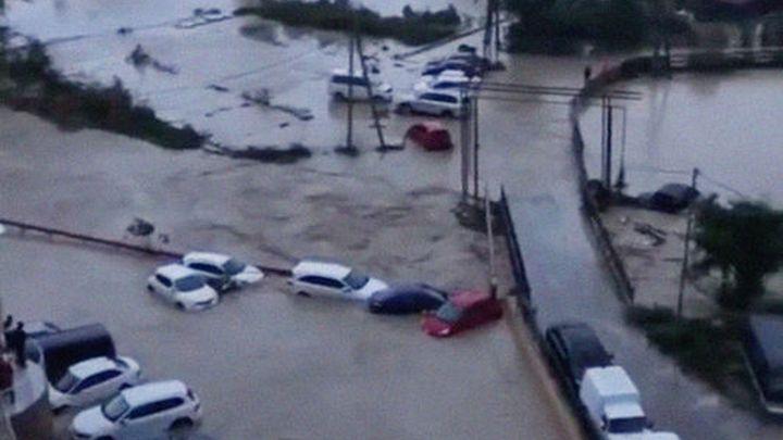 И ливни, и сильный ветер и, возможно, наводнение: На Приморье идет тропический шторм Франциско