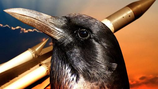 Полуактивная ворона самонаведения