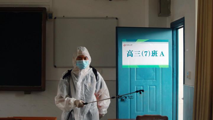 Виноваты летучие мыши? ВОЗ получила новые данные о коронавирусе из Уханя