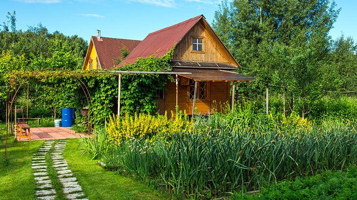 Во саду, не в огороде: С 2019 года построить дом станет сложнее