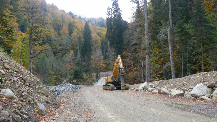 Экологи направили жалобу в Генпрокуратуру РФ по поводу строительства дороги в Сочинском нацпарке
