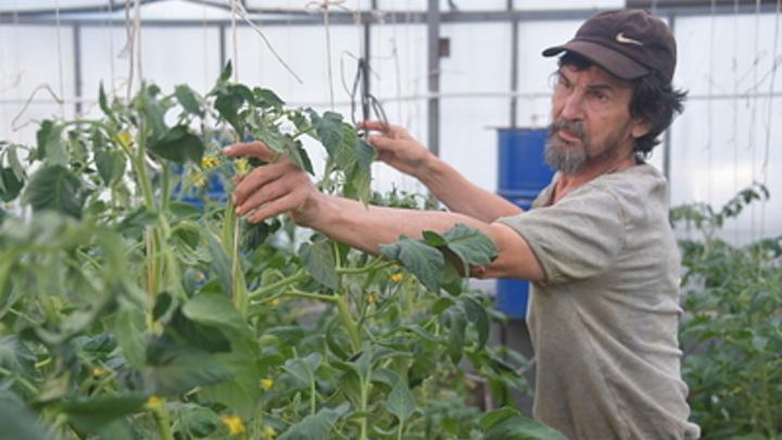 В Самаре может появиться первый многоквартирный дом с огородом