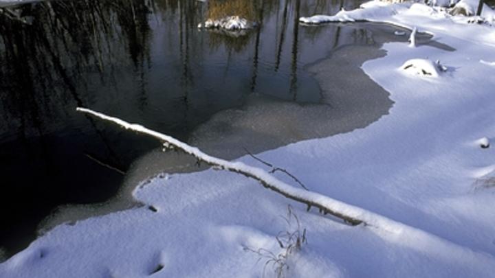 Мальчик провалился под лед на реке Шилка и утонул