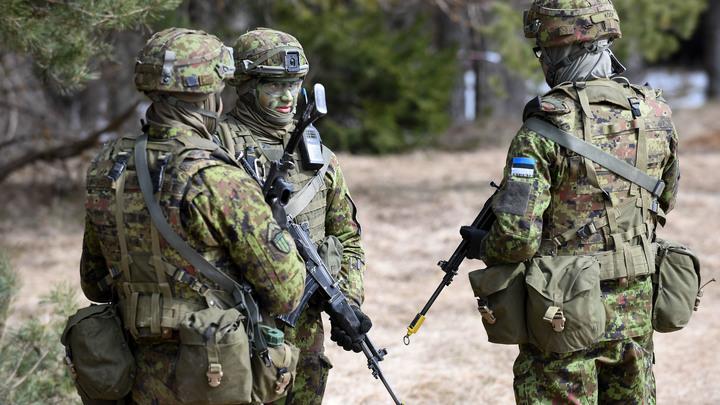 На задних лапках за пряником: Баранец раскрыл причины нелюбви Эстонии к России