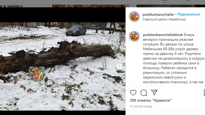 СК возбудил уголовное дело после падения дерева на ребенка в Челябинске