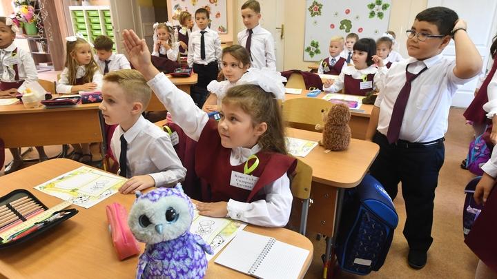 Владимирский Роспотребнадзор пошел в рейд по школам - мерить температуру