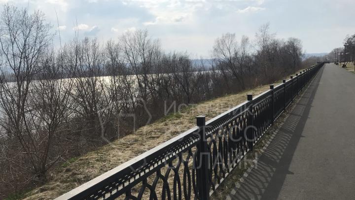 Кемеровчане просят вырубить деревья и сделать пляж