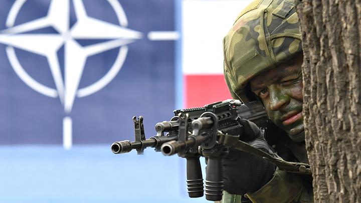 Рыси разорвали пасть: Польша недосчиталась русских десантников в Белоруссии