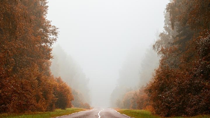 Ночью и утром 18 сентября в Подмосковье ожидается туман