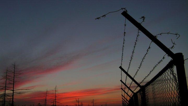 Литва построит 500 километров заборов с колючей проволокой на границе с Беларусью