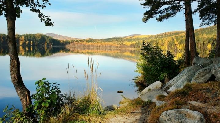 Скандальная стройка на озере Тургояк одобрена Главным управлением лесами