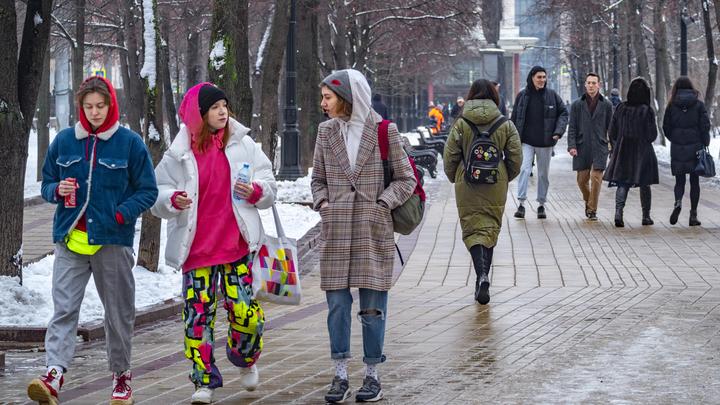 Идут на север, а не на юг: Названы причины аномально тёплой зимы