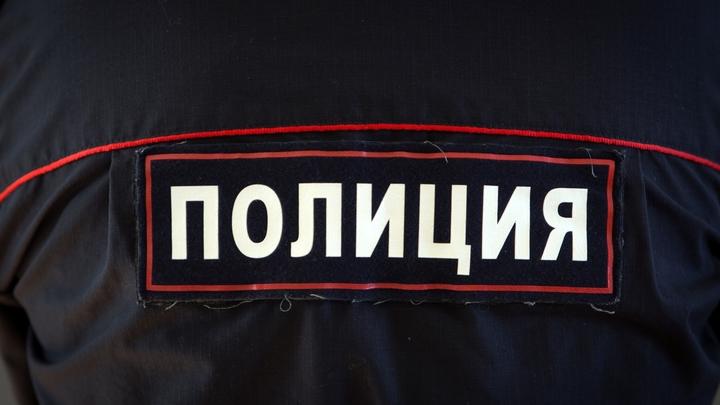 Пастух заработал 1 млн за пару минут: Обычный чабан сделал Калмыкию безопаснее