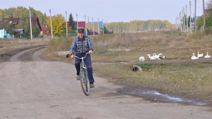 В Новосибирской области сократилось трудоспособное население