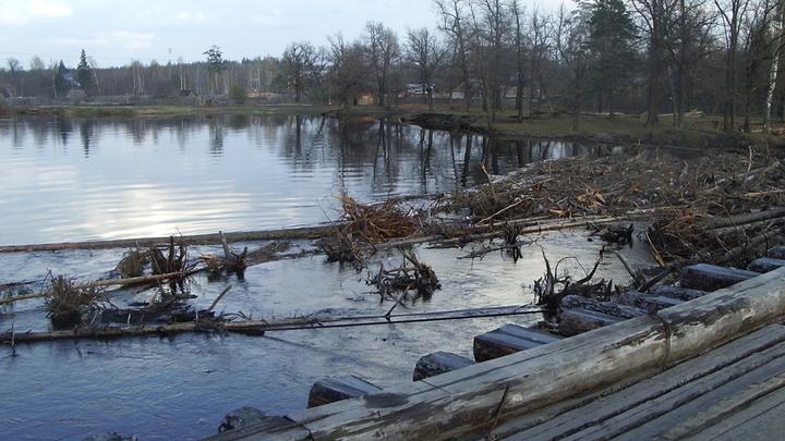 Паводок. Как повлияли дождливые выходные на уровни рек Владимирской и Ивановской областей