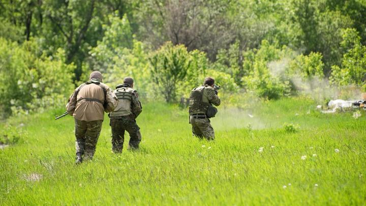 Украинские силовики не выдержали и получаса без стрельбы во время режима тишины