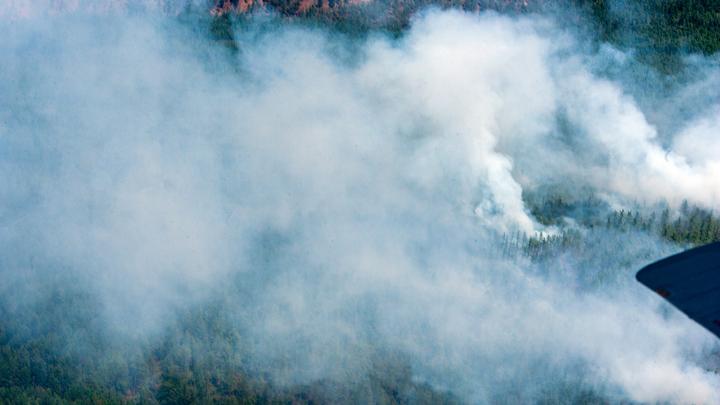 Карелию охватили десятки пожаров: Людей будили ночью и вывозили…