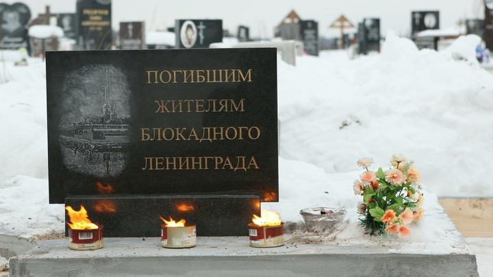 Создатель «Коллектора» решил снять черную комедию облокаде Ленинграда