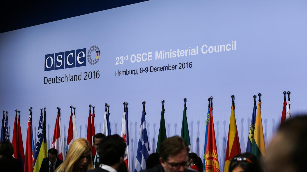 Большинство членов ОБСЕ требуют, чтобы Россия отказалась от Крыма