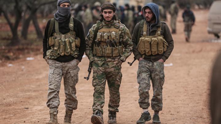 Иллюзий-то строить не надо: Сатановский подсказал план обуздания турок в Сирии