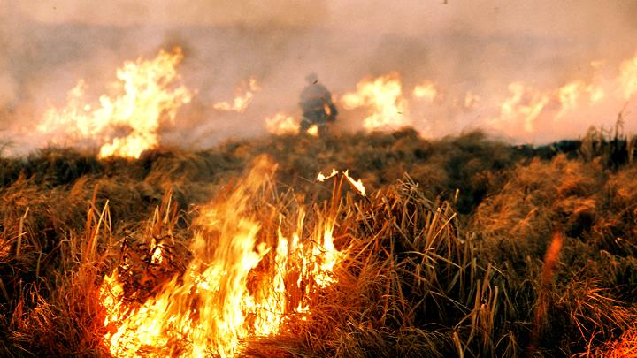 Забайкалье в огне: Помочь попавшим в беду может каждый - администрация продолжает сбор средств