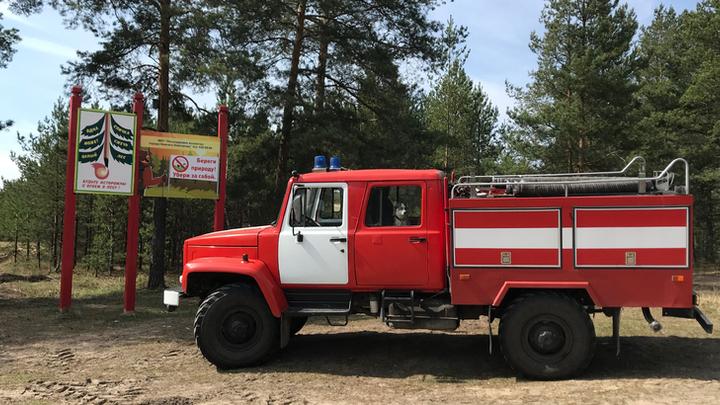 Четвёртый класс пожароопасности объявлен в лесах Нижегородской области