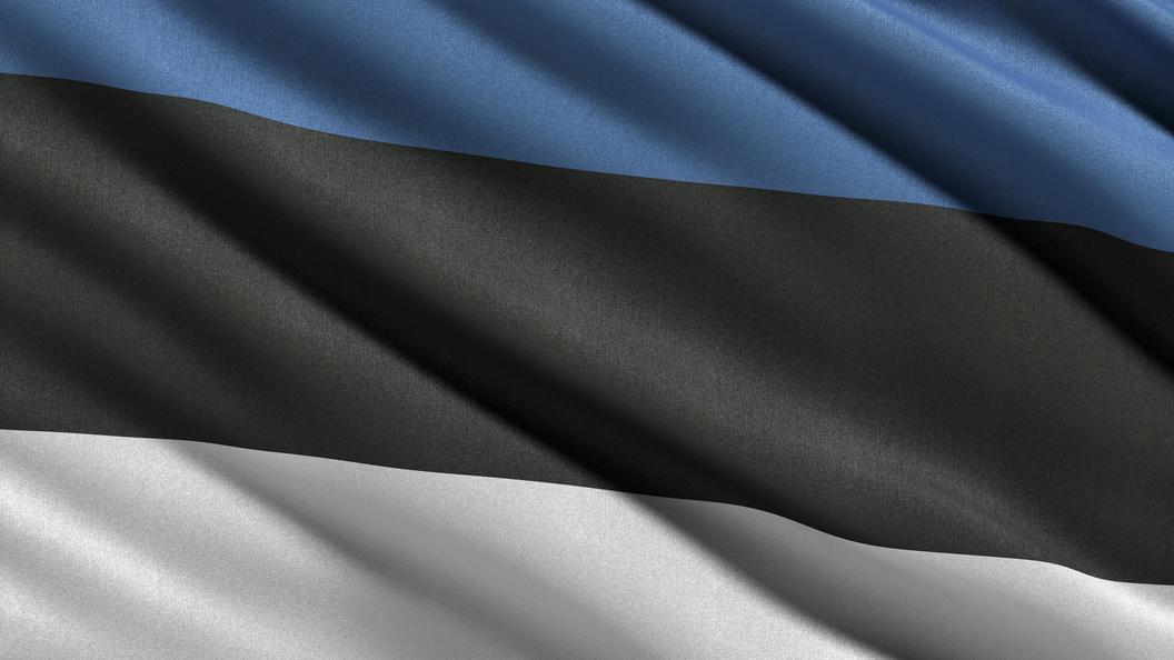 Москва иТаллин обменялись осужденными зашпионаж