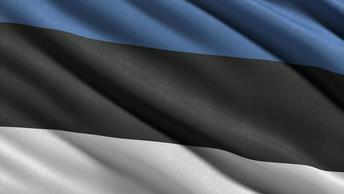 Россия и Эстония совершили шпионский обмен под Псковом