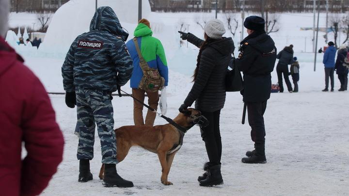 В Москве задержан 15-летний подросток, пять раз минировавший школу