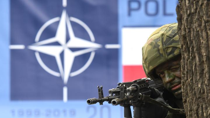 Галстуков не ели. Польша готовится к походу на Восток