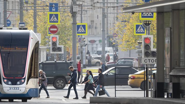 Проект скоростной трамвайной сети «Славянка» оценили в ООН, а петербуржцы остались недовольны