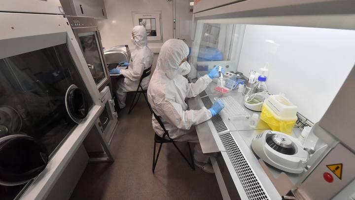Заразнее, но не опаснее. Эксперт оценил мутацию коронавируса, зафиксированную в Санкт-Петербурге