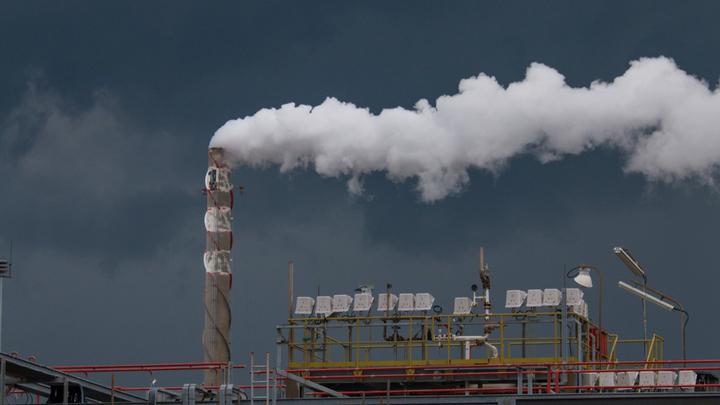 Чиновники - защитникам экологии: Денег нет, но вы дышите